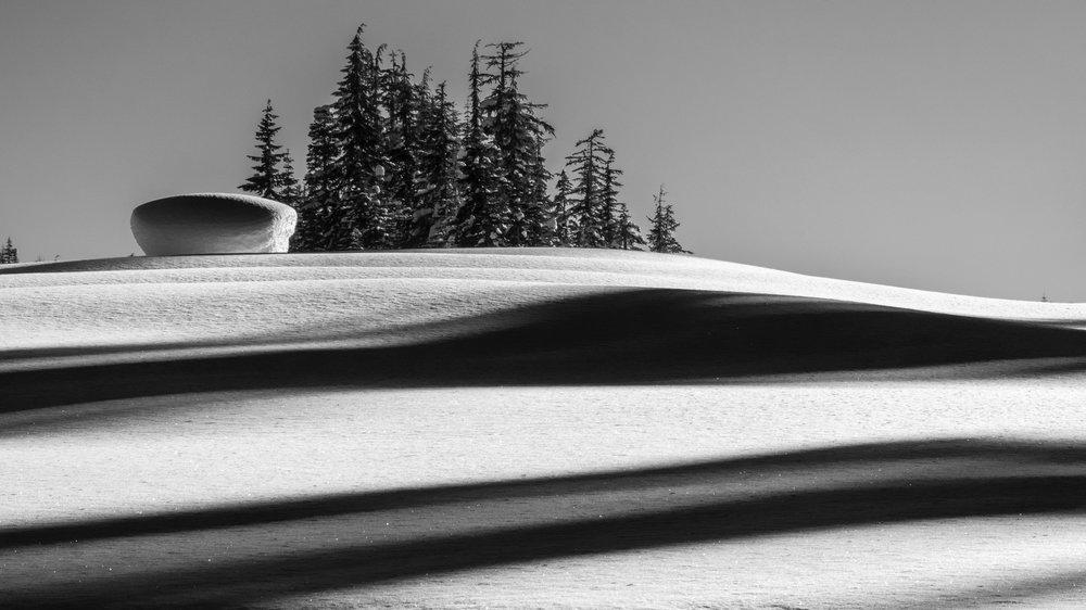 Callaghan Snowshoeing - 15.jpg