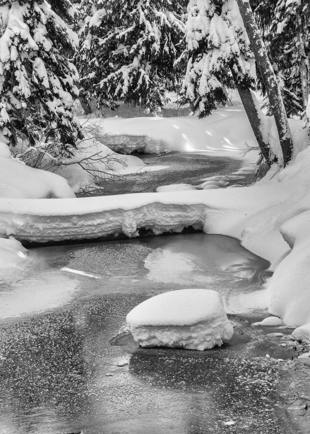 Callaghan Snowshoeing - 18.jpg