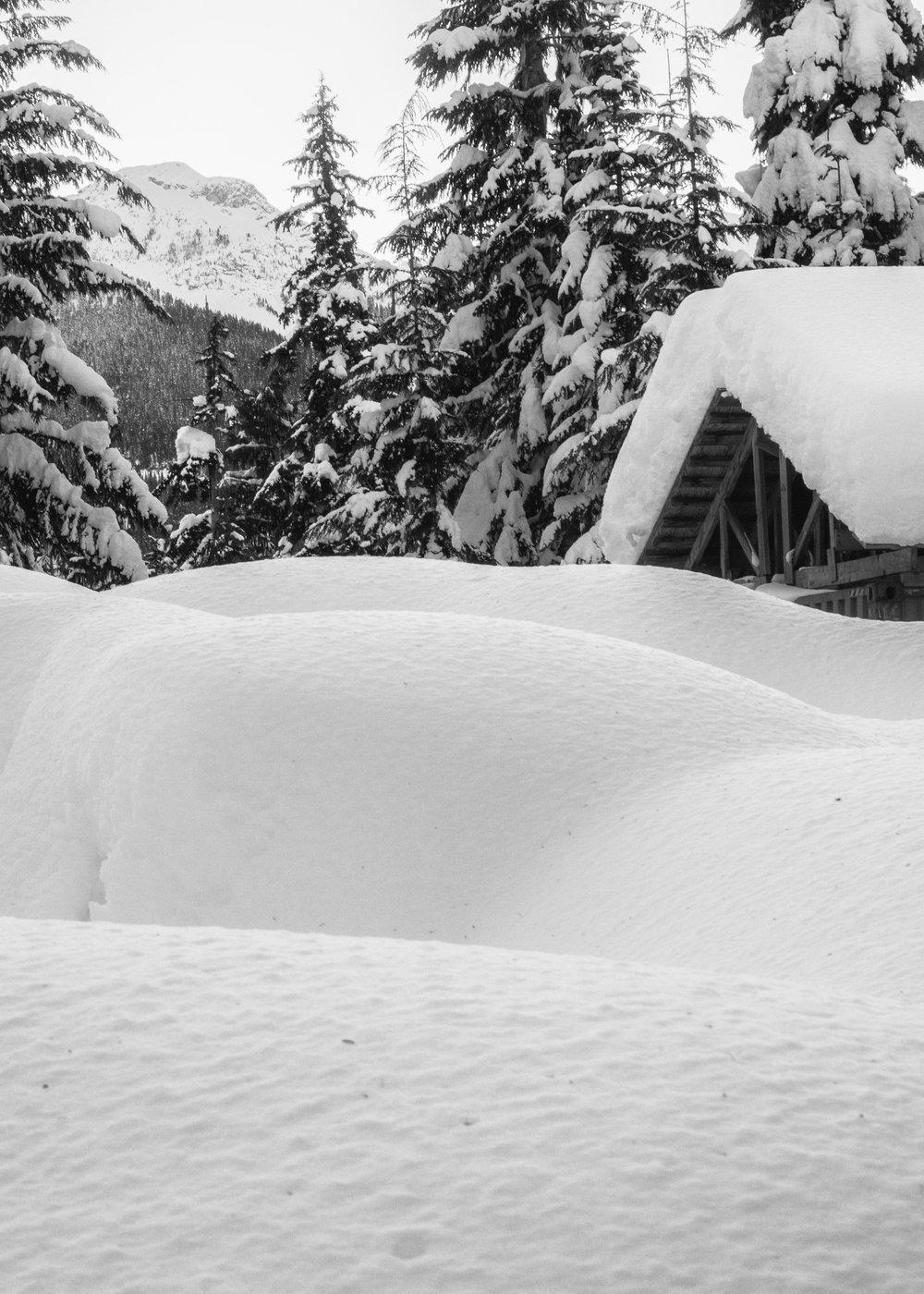 Callaghan Snowshoeing - 45.jpg