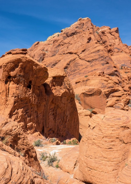The signature red rocks of the park. There were tons of people rock climbing all over the place.