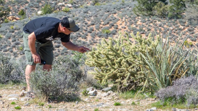 Yes, Shawn really had to see if the cactus was prickly...