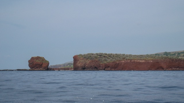 The Lanai coast, from our first dive.