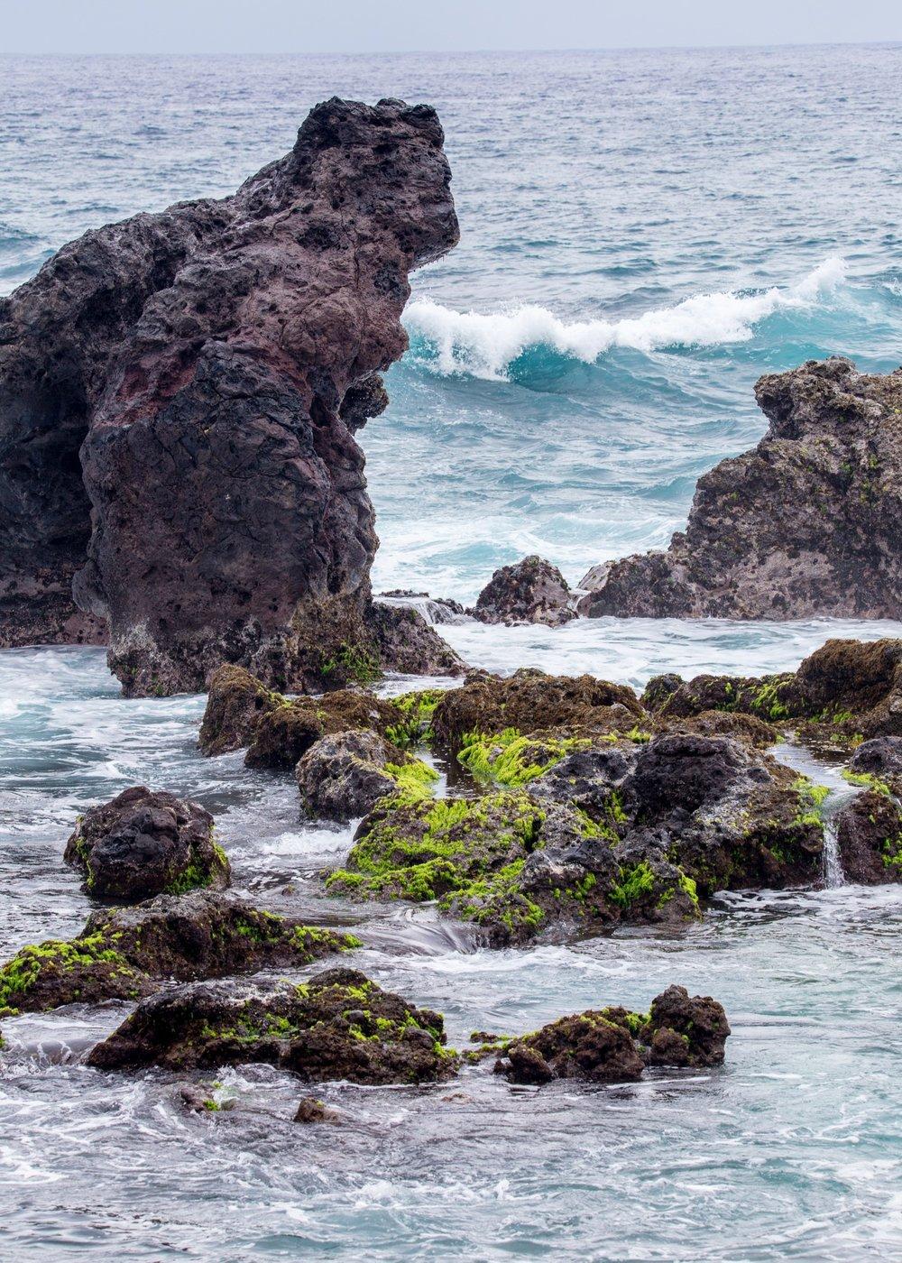 The rocky shoreline