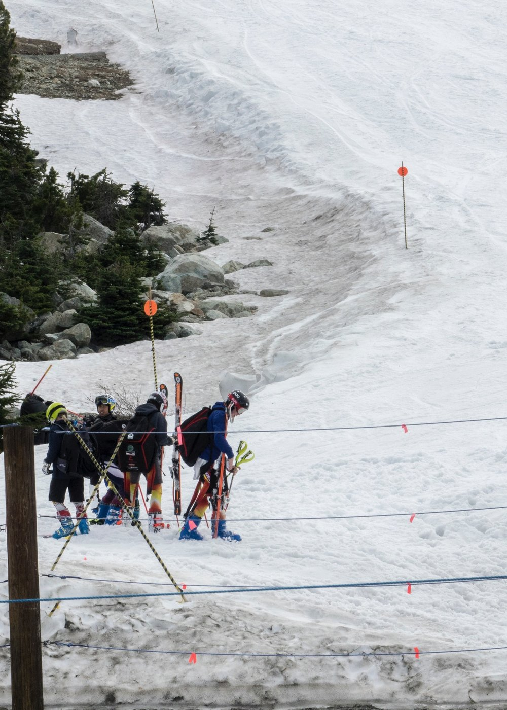 Summer skiers. Need to try that one day...