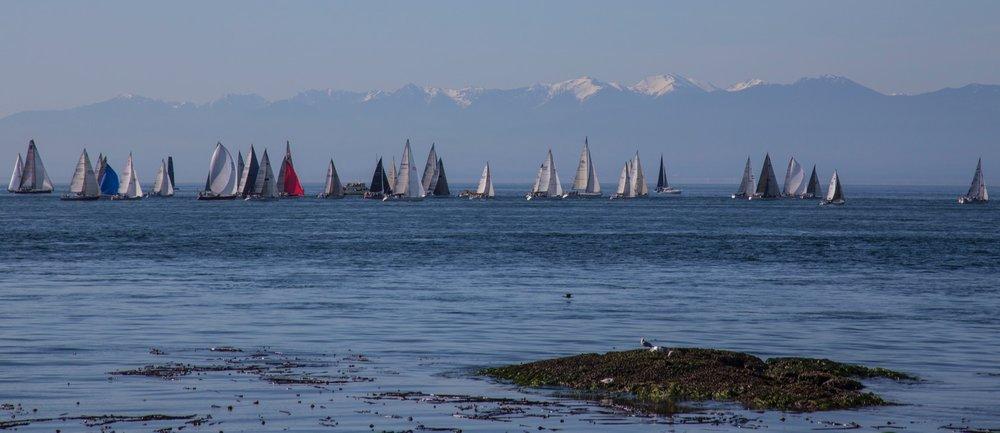 Vancouver Island - 29.jpg