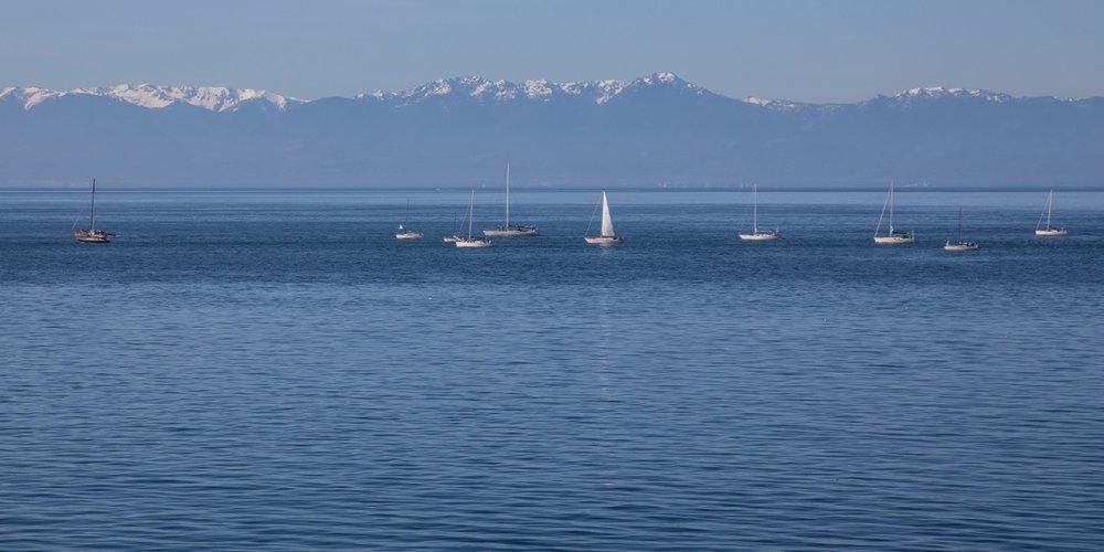 Vancouver Island - 24.jpg