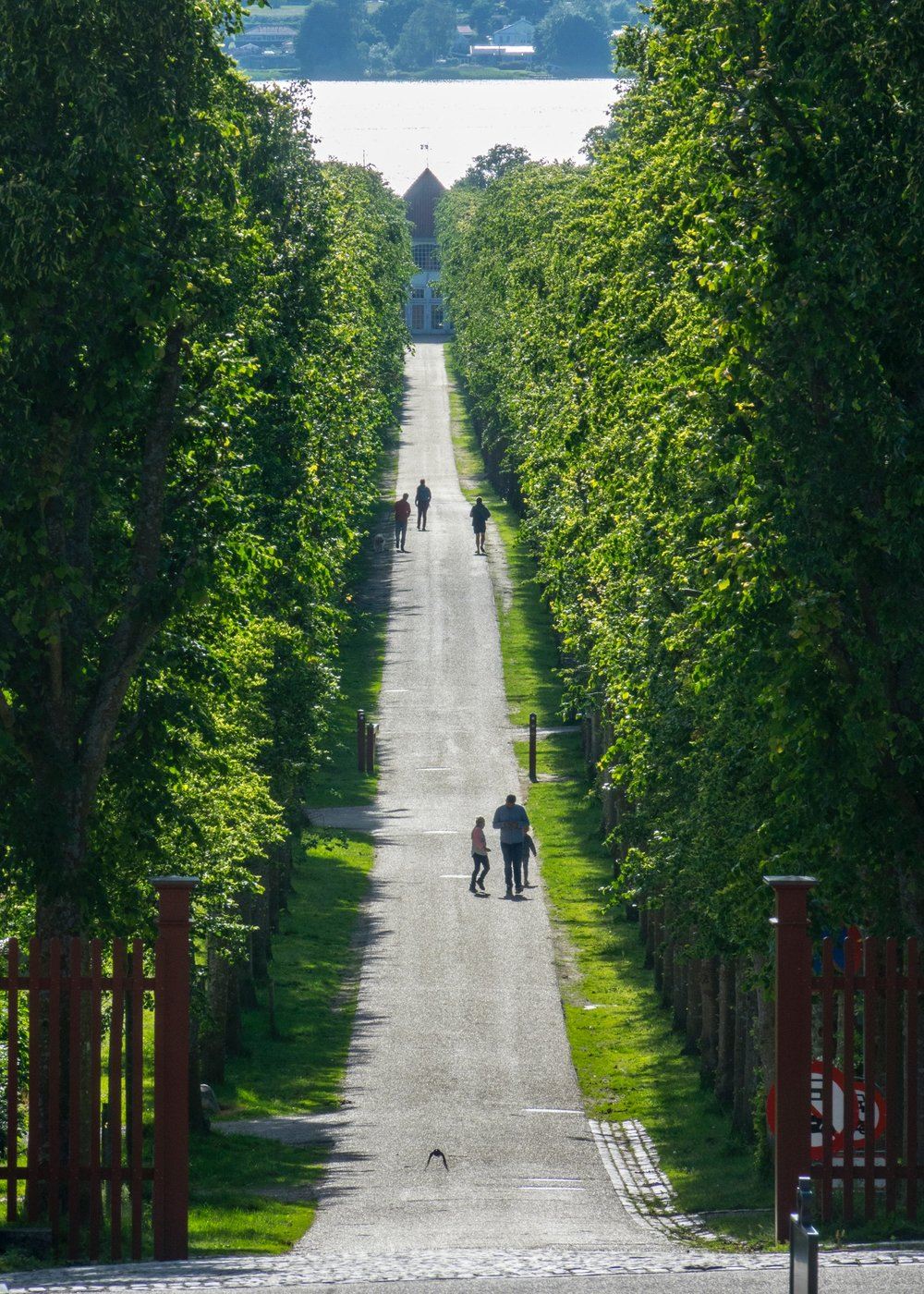 A long path up from the lake, out front of the palace.