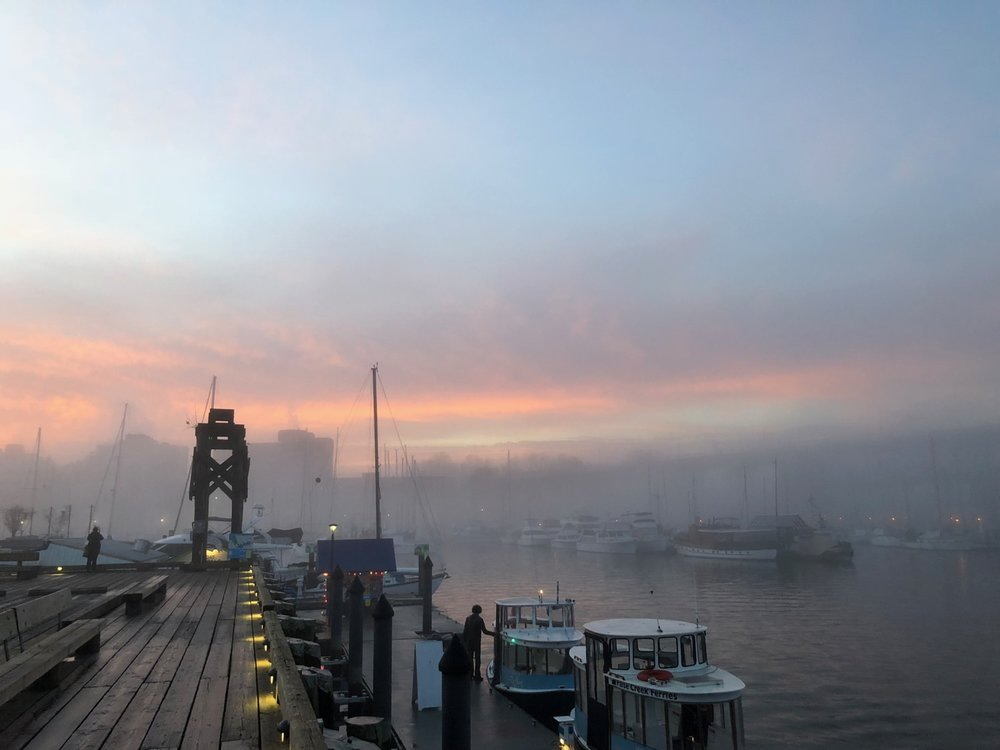 Vancouver in the Fog - December 2017, Granville Island