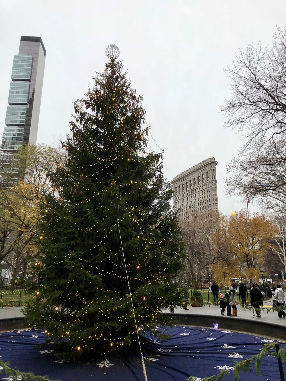 A Christmas Tree in Madison Square Park, with a view back to some old and some new achitectural gems