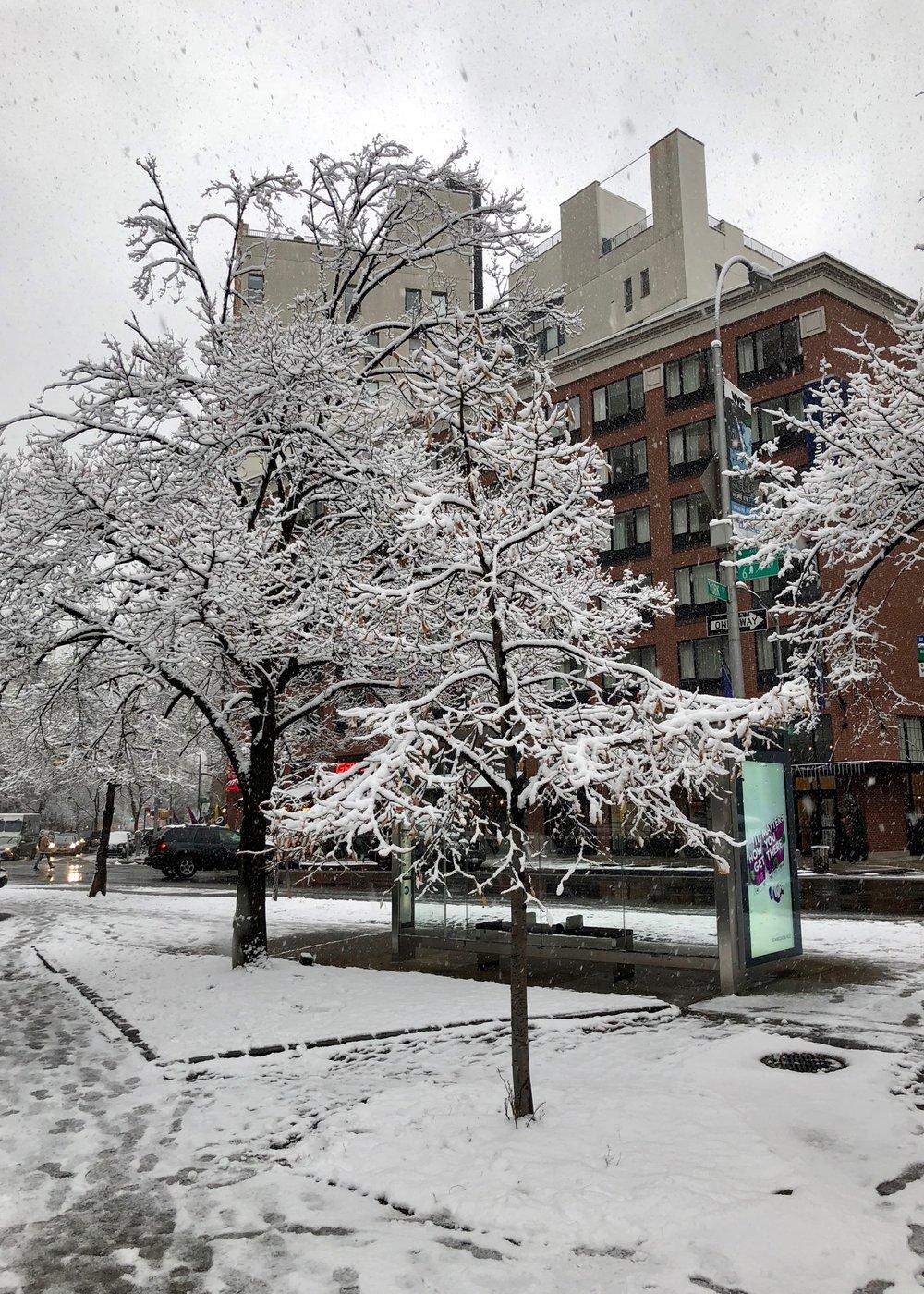 NYC 2017 - 71.jpg