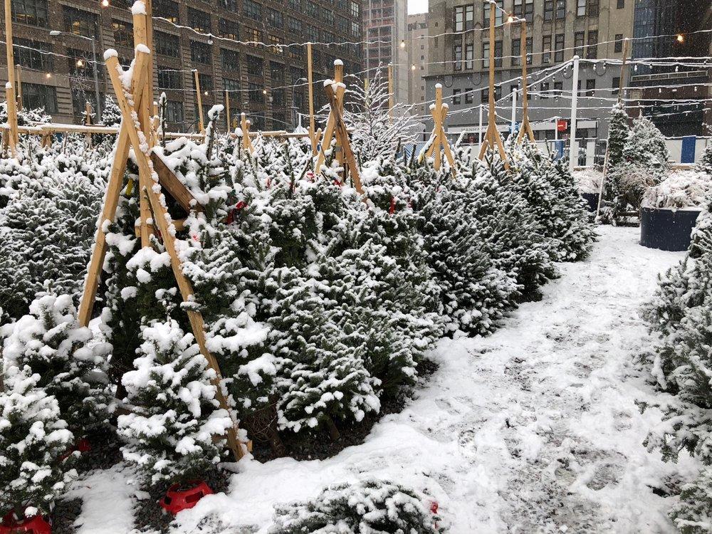 NYC 2017 - 73.jpg