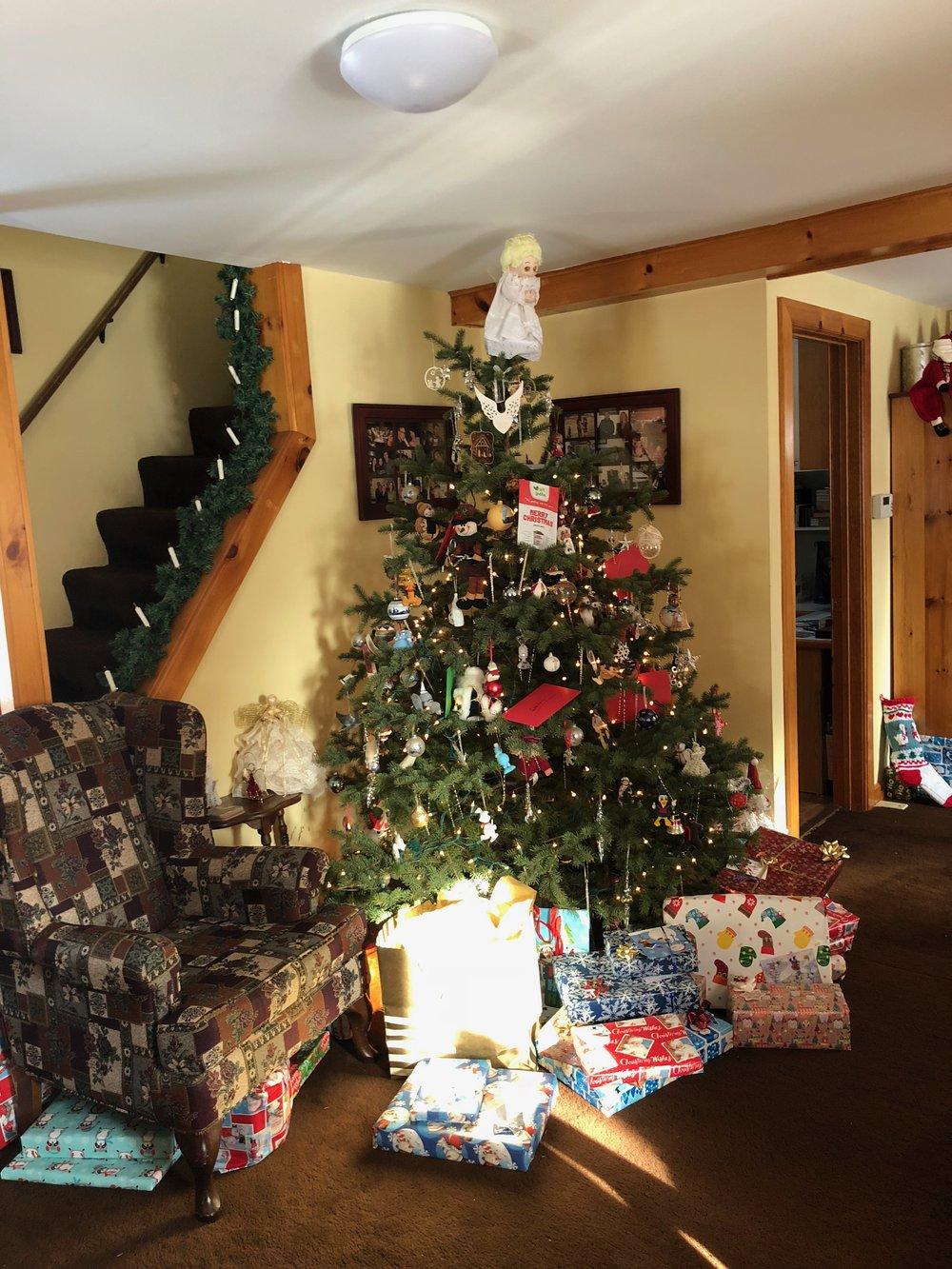 Christmas 2017 - Christmas Day - 1.jpg