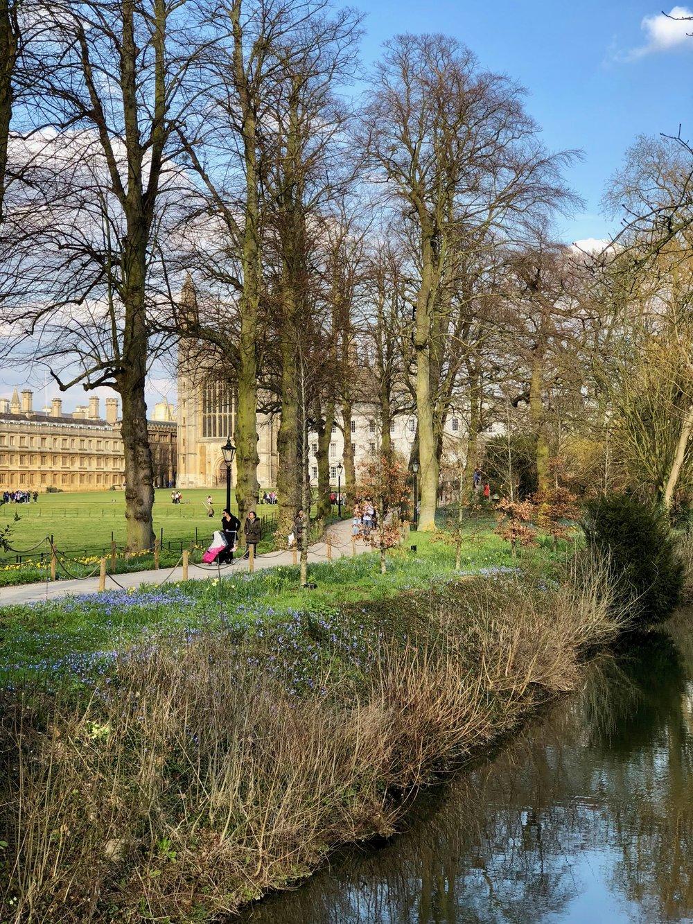 Cambridge1 - 13.jpg