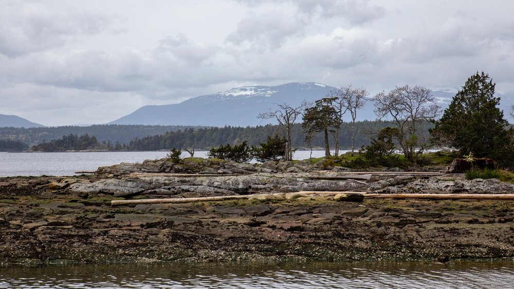 A view back towards Vancouver Island - still a fair bit of snow left.