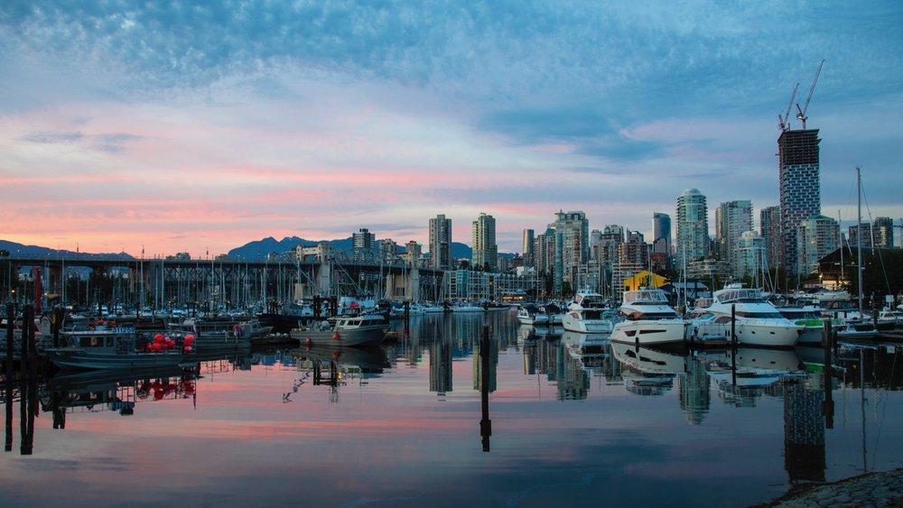 Vancouver Wildflowers - 17.jpg