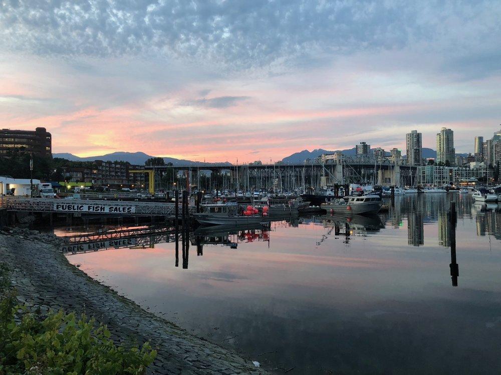 Vancouver Wildflowers - 18.jpg