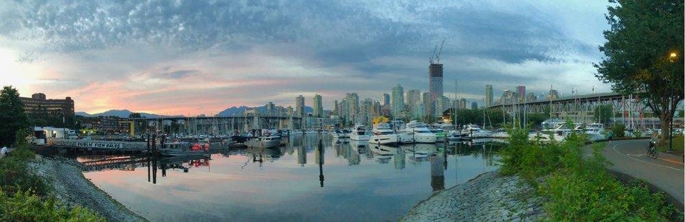 Vancouver Wildflowers - 19.jpg
