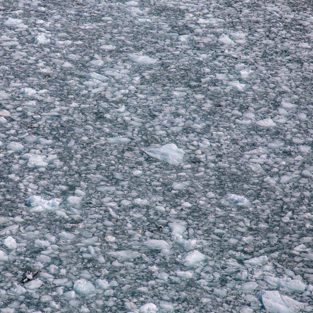 Hubbard Glacier - 65.jpg