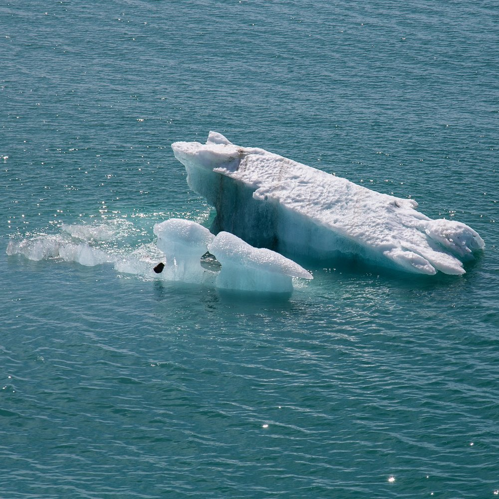 Hubbard Glacier - 70.jpg