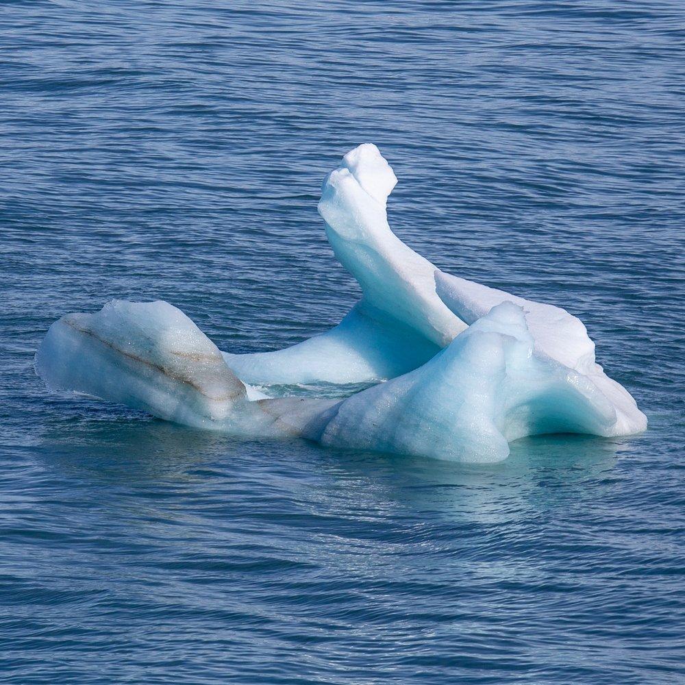 Hubbard Glacier - 13.jpg