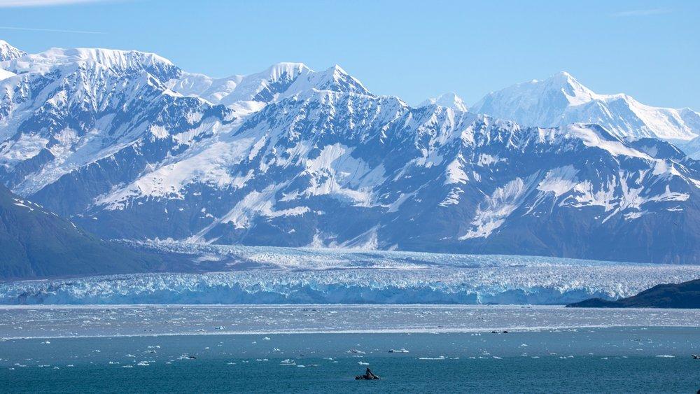 Hubbard Glacier - 20.jpg
