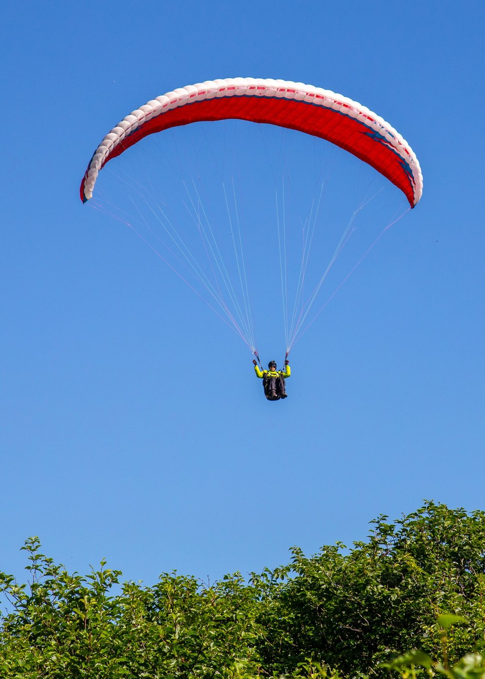 The paragliders were a bit crazy, zipping overhead of all the people on the trails.