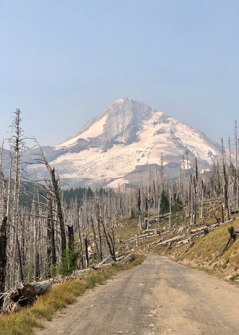 The drive up was through the remains of an old forest fire, but gave us impressive views of Mount Hood and it's glaciers.