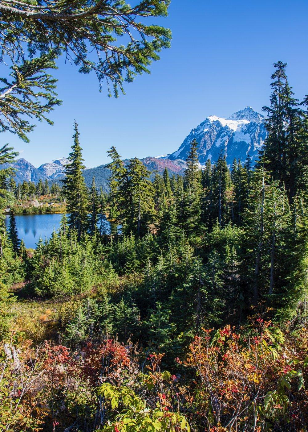 Mount Baker 10 2018 - 37.jpg