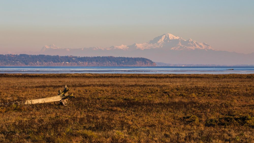 It was a beautiful day, with stunning views south to Mount Baker.