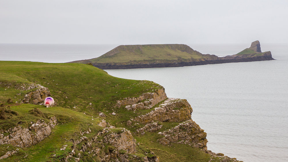 A view of the mainland and out to Worm's Head.