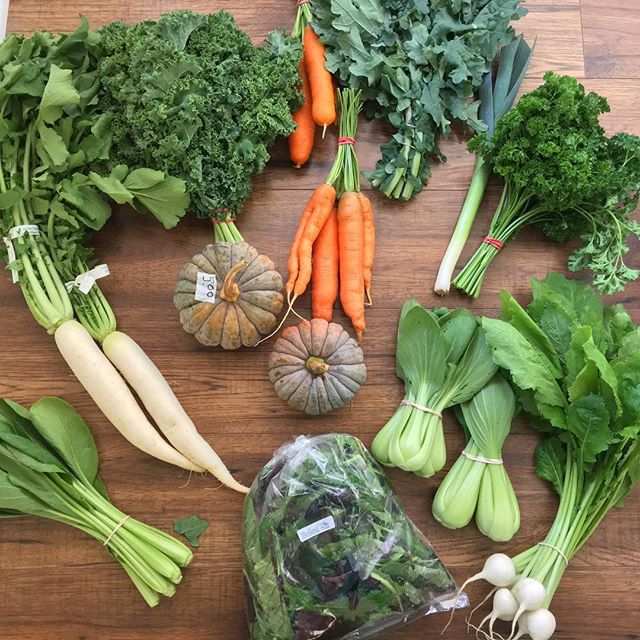 Woohoo! Back at the market after a few weeks off. Give me allllll the veggies: #heirloomkabocha #carrots #bokchoy #komatsuna #kale #parsley #turnips #saladgreens #leek and #daikon. Of course, it is all #local and #organic 👌🏻👊🏻 #eatrealfood #macrobiotic #vegan #vegetables #wholefood