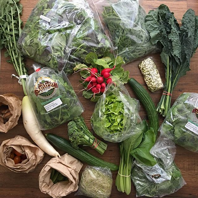 Hallelujah!  All the veggies 🙌🏻 #shiitake #cherrytomatoes #sugarsnappeas #daikon #mixedgreens #radish #lettuce #cucumber #kale #komatsuna #brocoli #arugula #sprouts.  All #organic #local #prana filled goodness. So grateful for my market! #macrobiotic #vegan #wholefood #healing #eatrealfood.