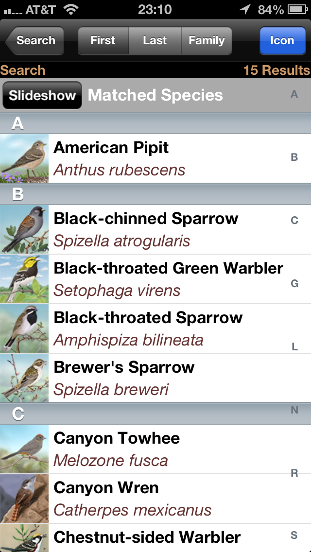 iBird search results