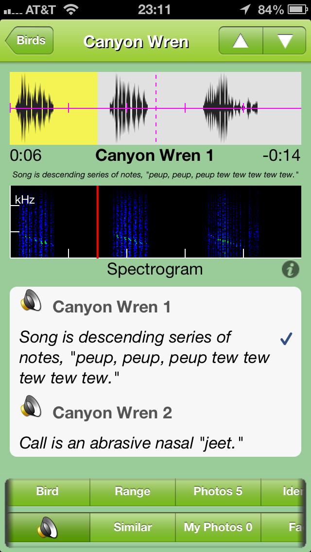 iBird spectrogram