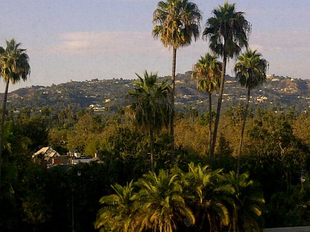 View of the Hollywood Hills from my room at the Beverly Hilton, preparing for meetings for THE NEXT BIG DREAM