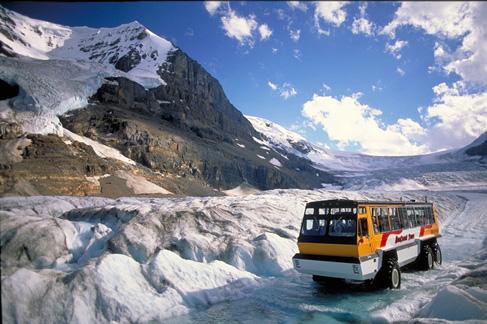 Icefields.jpg