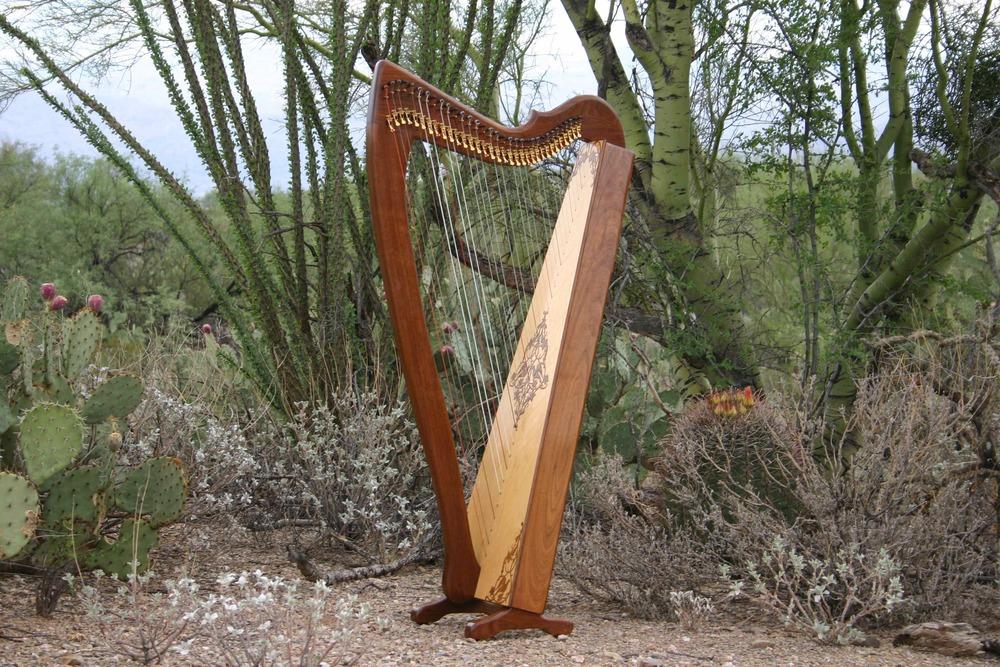 I play a William Rees Corlieu Falls harp. I love its even, mellow tone and light tension.