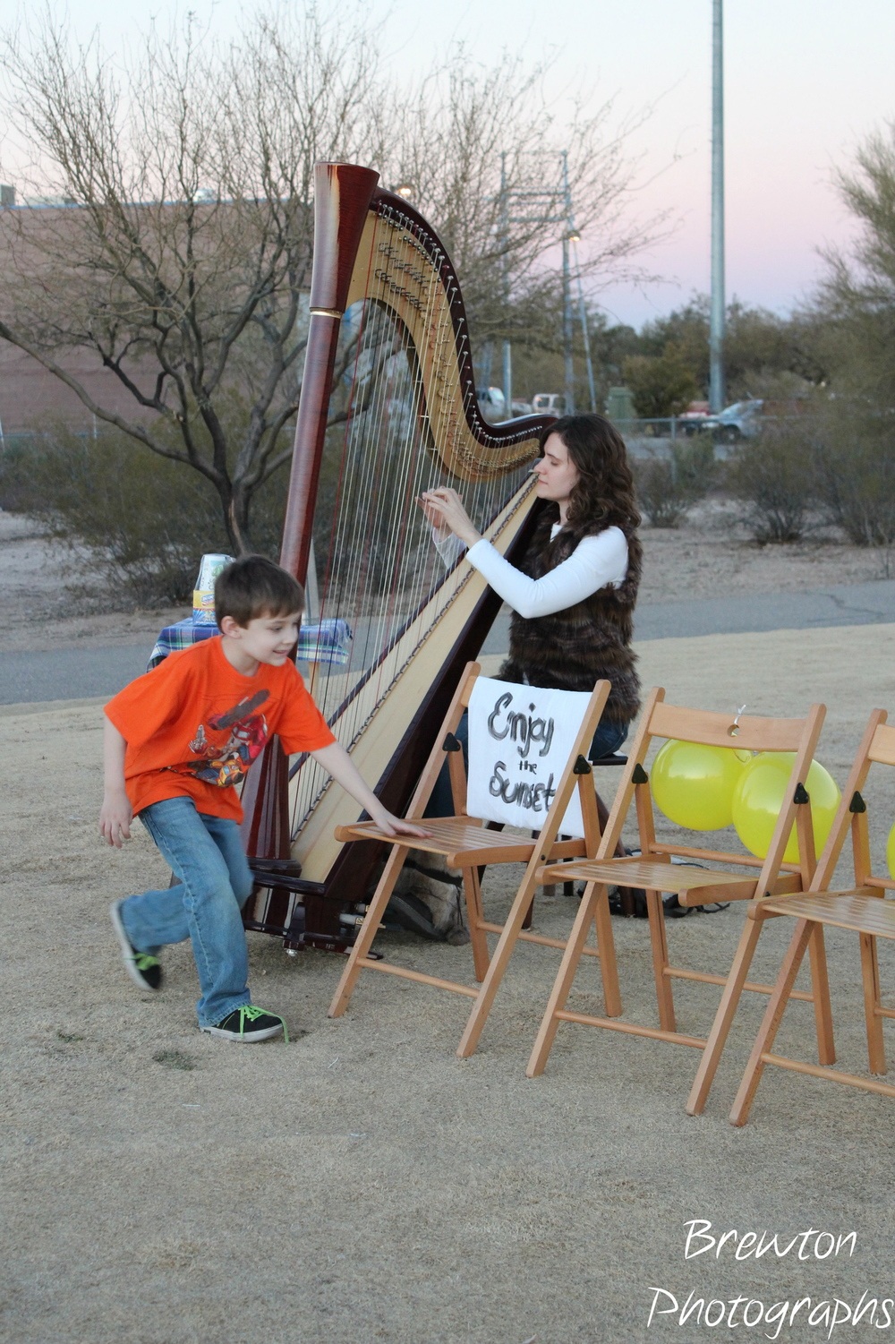 My Camac Atlantide Electric Pedal Harp. I love its bold sound and my access to chromatic music this harp gives me.