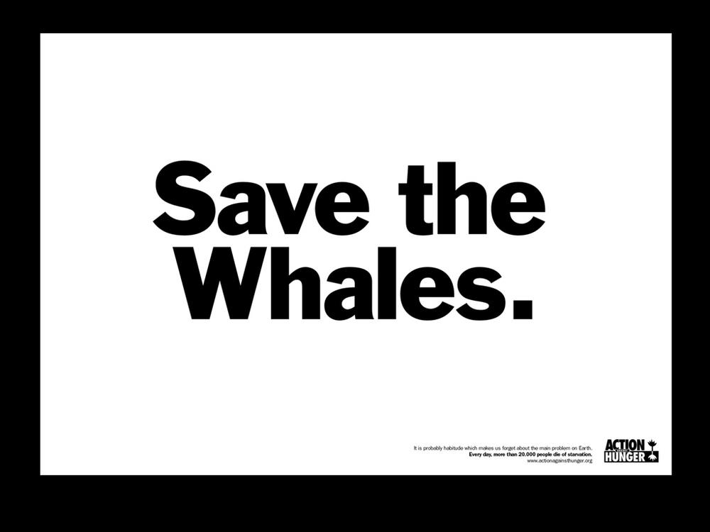 046ACH Whales.jpg
