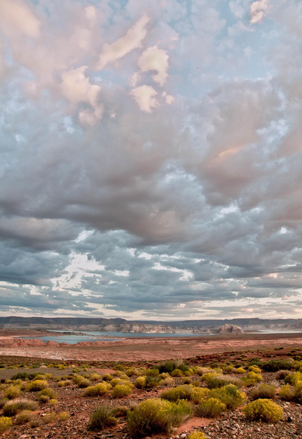 Arizona Desert 3
