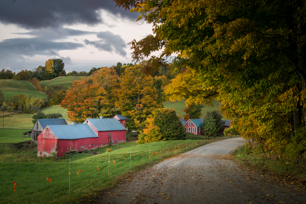 Vermont Farm in Autumn - 1