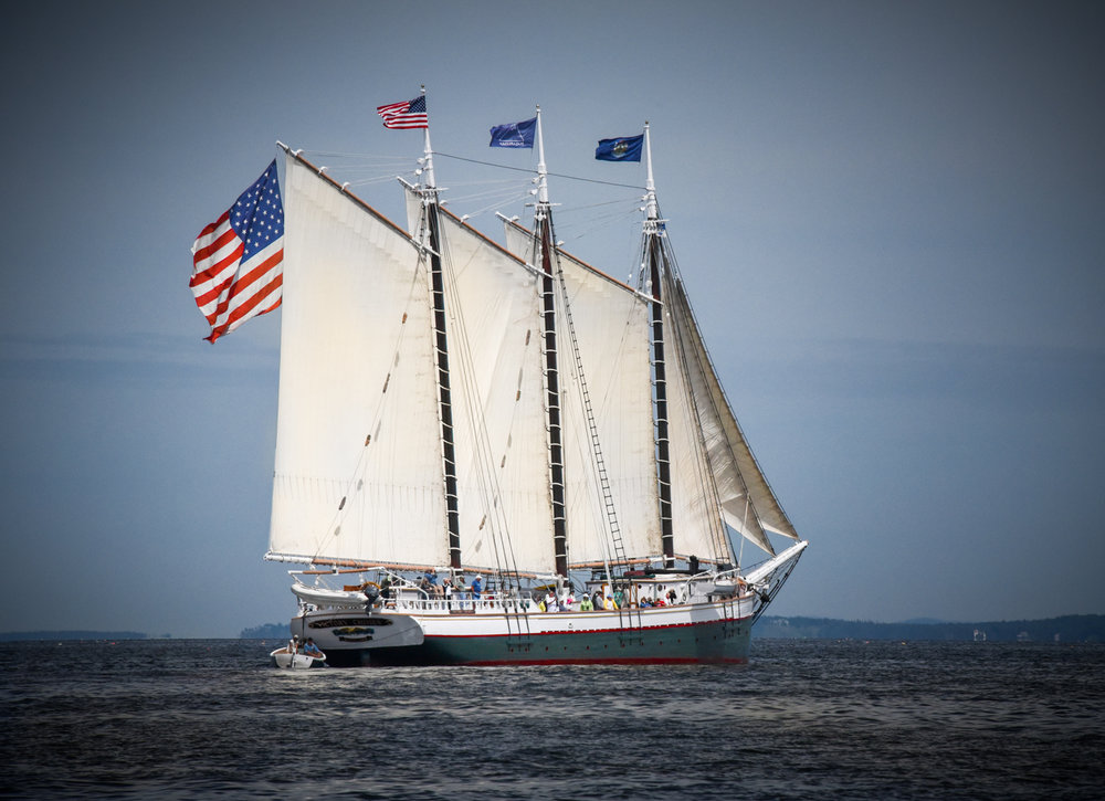 Windjammer Parade in Rockland, Maine