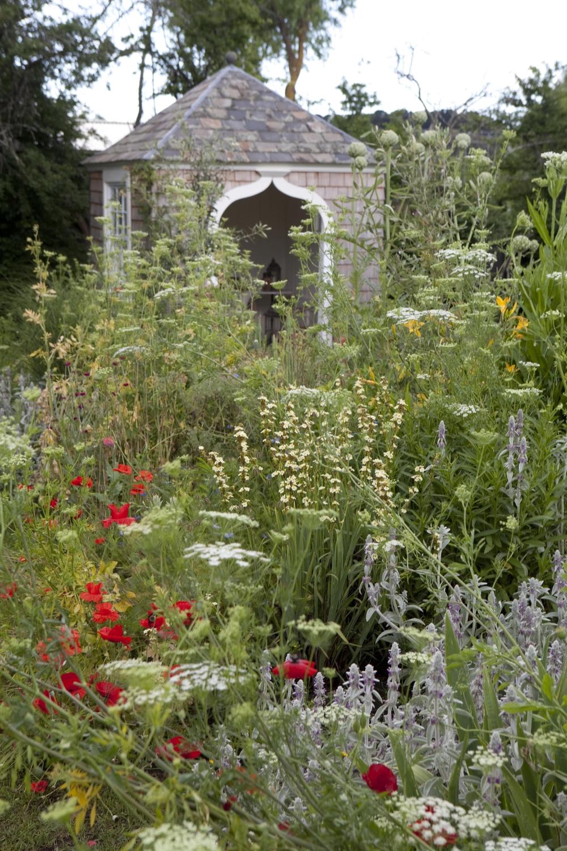 Meadowbank Wide pics-5.jpg