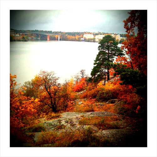 autumnlandscape1.jpg