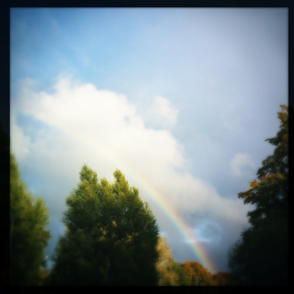 iPhoneography: Rainbow