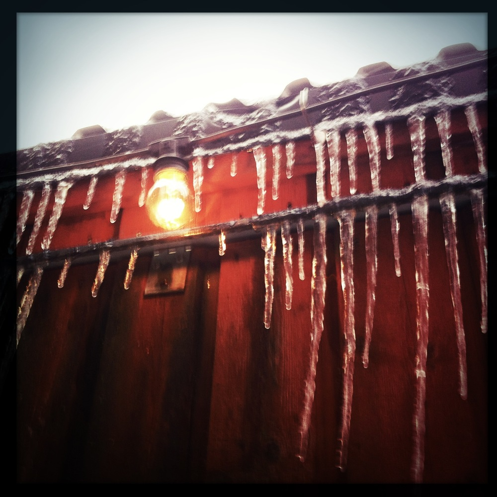mobile photo: icicles