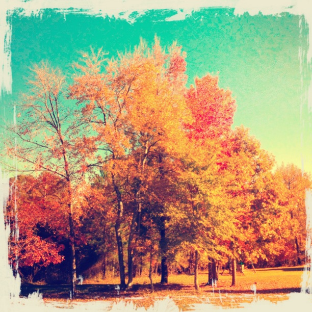"Edited ""Warm Day"" Filter - Vintique"