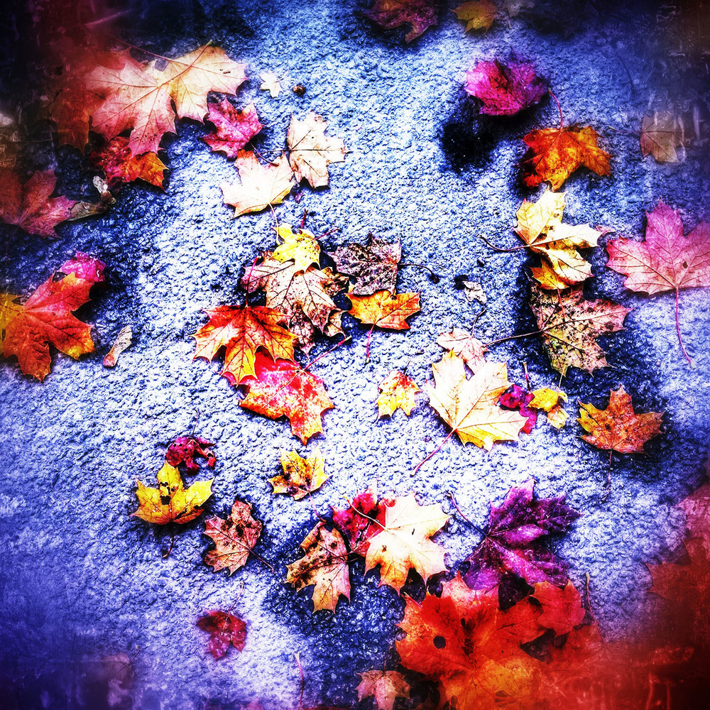 First Autumn Leaves. iPhoneography by Kate England