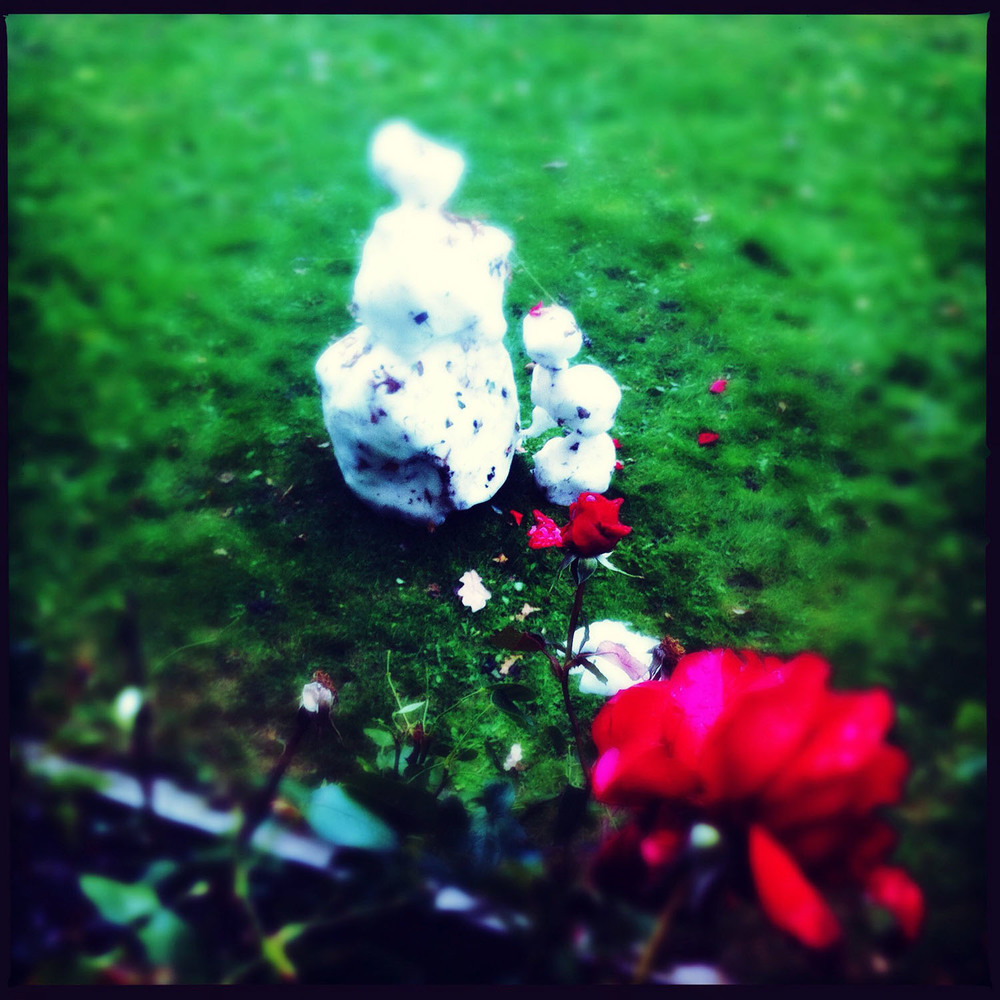 Snowman and rose. iPhoneograpy by Kate England.