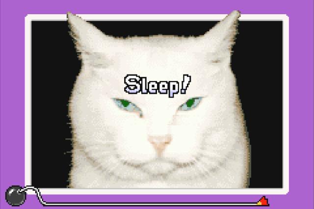 WarioWare sleep.png
